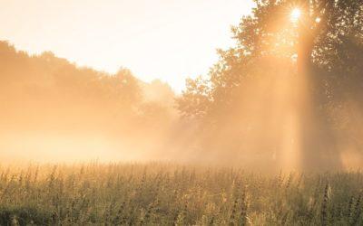 Seeing Through Blind Faith